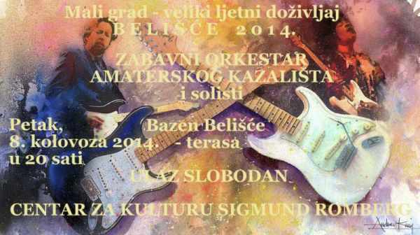 ZO Bazen 2014 plakat